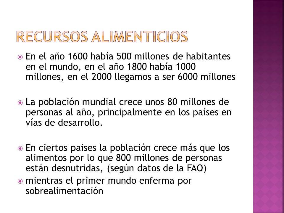 IMPACTOS Y RIESGOS DE LA AGRICULTURA Y GANADERIA INTENSIVAS