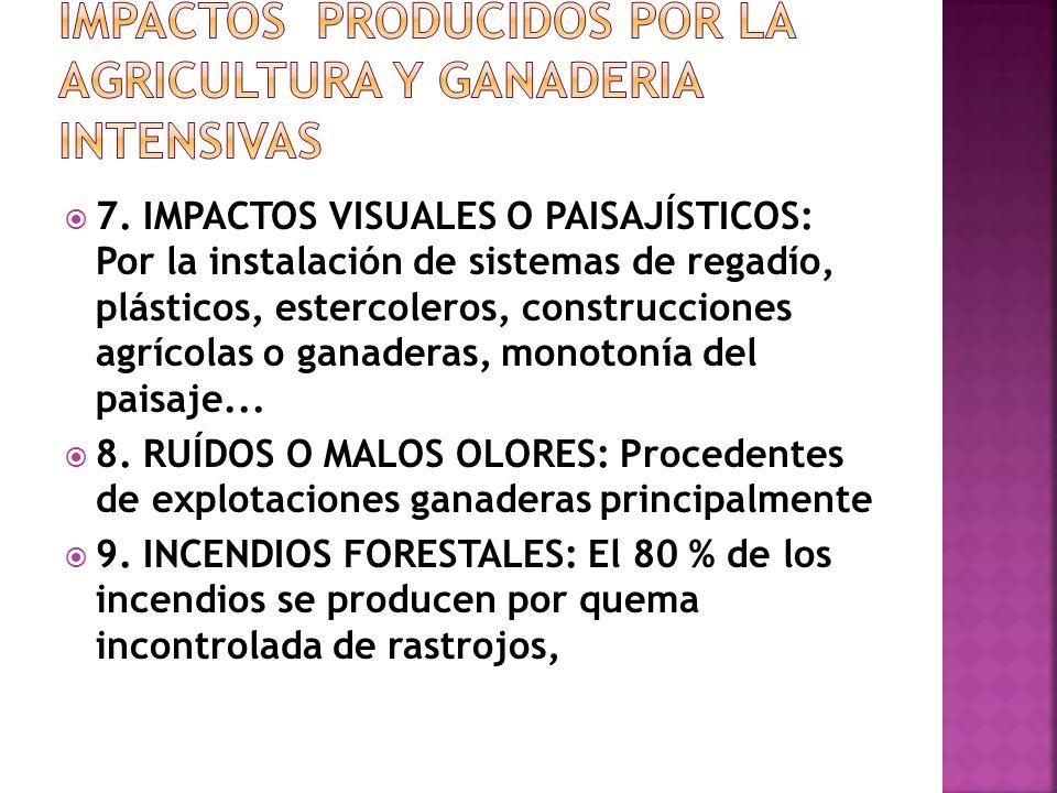 4. PÉRDIDA DE FERTILIDAD DE LOS SUELOS 5. CONTAMINACIÓN DE AGUAS SUPERFICIALES Y SUBTERRÁNEAS Y DE LOS SUELOS: Por el empleo abusivo de fertilizantes,