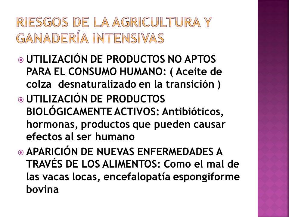 7. IMPACTOS VISUALES O PAISAJÍSTICOS: Por la instalación de sistemas de regadío, plásticos, estercoleros, construcciones agrícolas o ganaderas, monoto