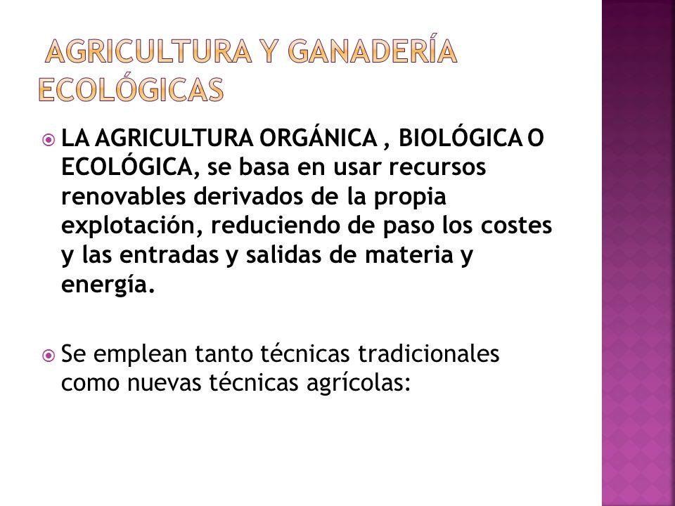 PRESENCIA DE SUSTANCIAS BIOACUMULABLES EN LOS ALIMENTOS: Por uso inadecuado de pesticidas, o contaminación de aguas de riego con sustancias no biodegr