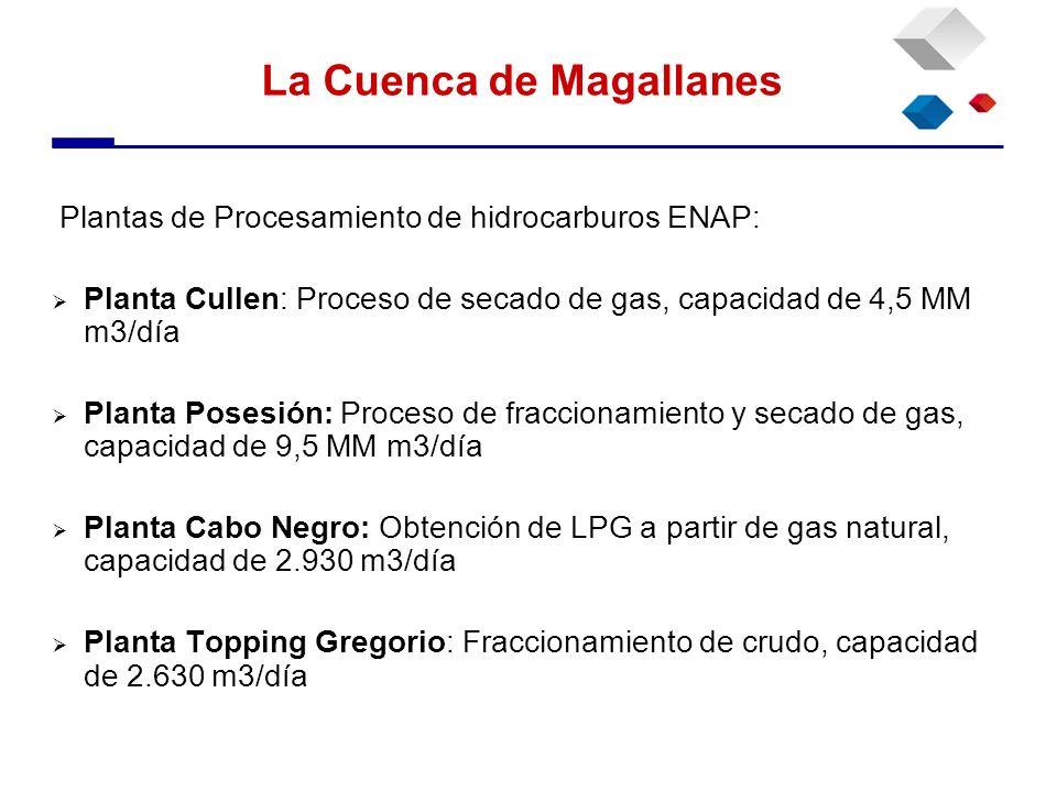 Plantas de Procesamiento de hidrocarburos ENAP: Planta Cullen: Proceso de secado de gas, capacidad de 4,5 MM m3/día Planta Posesión: Proceso de fracci
