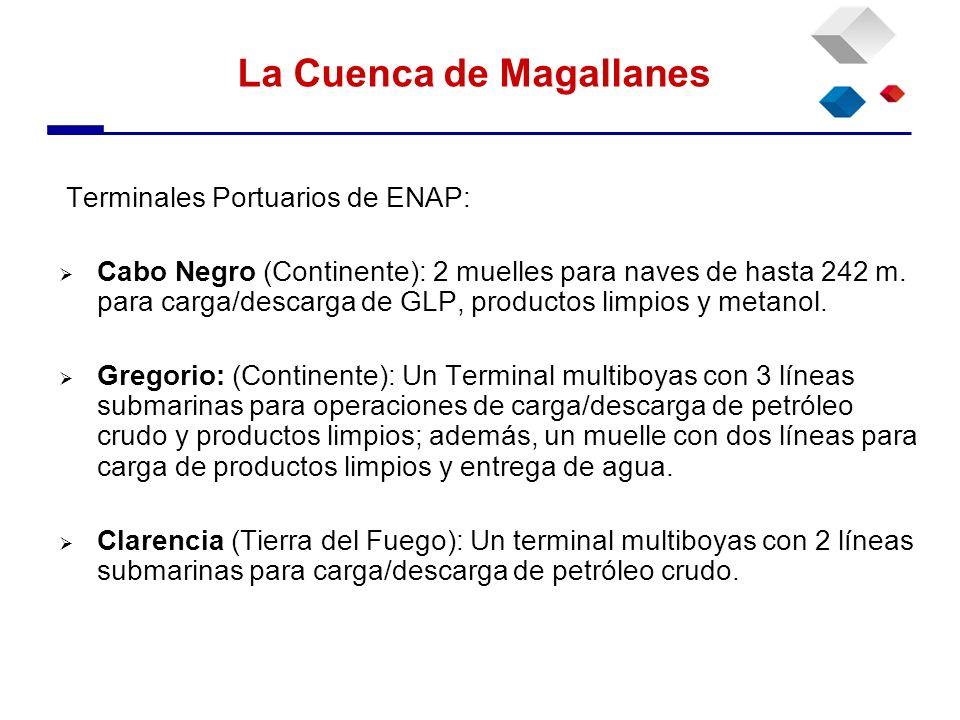 Terminales Portuarios de ENAP: Cabo Negro (Continente): 2 muelles para naves de hasta 242 m. para carga/descarga de GLP, productos limpios y metanol.