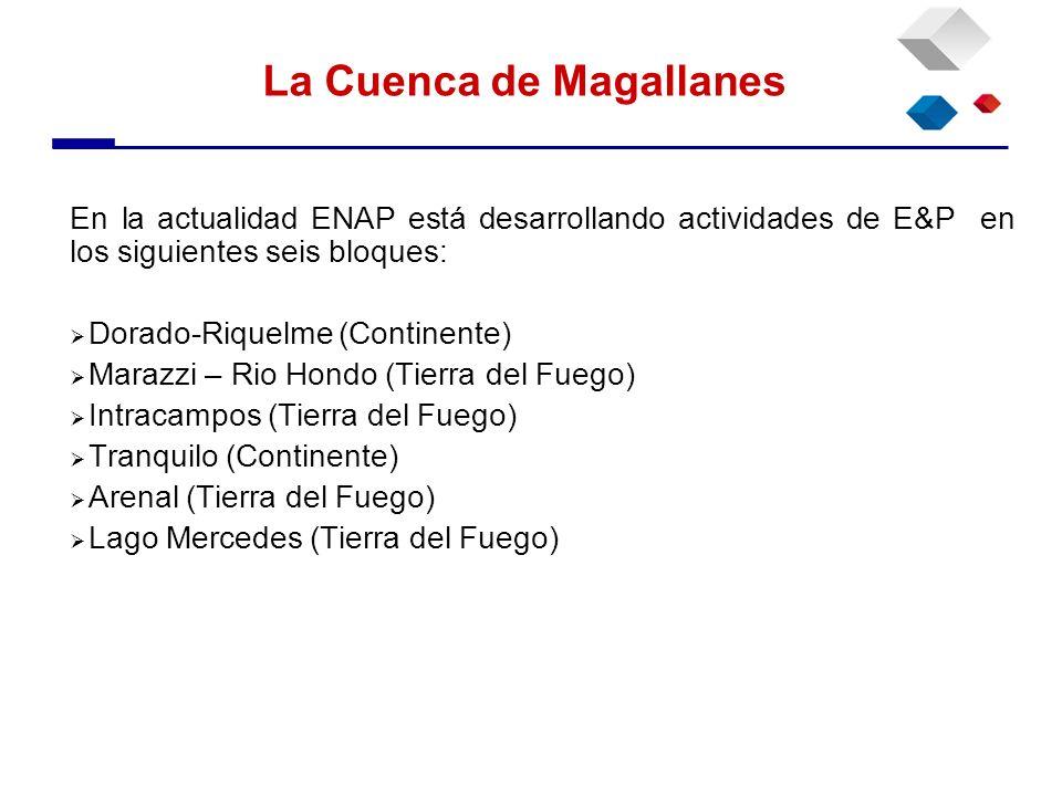 En la actualidad ENAP está desarrollando actividades de E&P en los siguientes seis bloques: Dorado-Riquelme (Continente) Marazzi – Rio Hondo (Tierra d