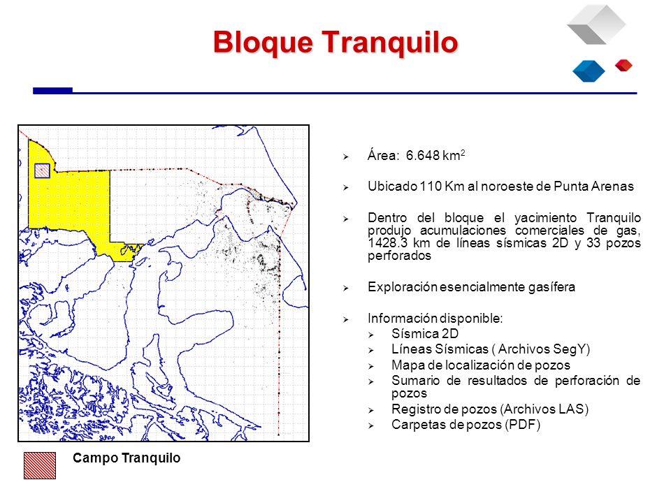 Bloque Tranquilo Área: 6.648 km 2 Ubicado 110 Km al noroeste de Punta Arenas Dentro del bloque el yacimiento Tranquilo produjo acumulaciones comercial