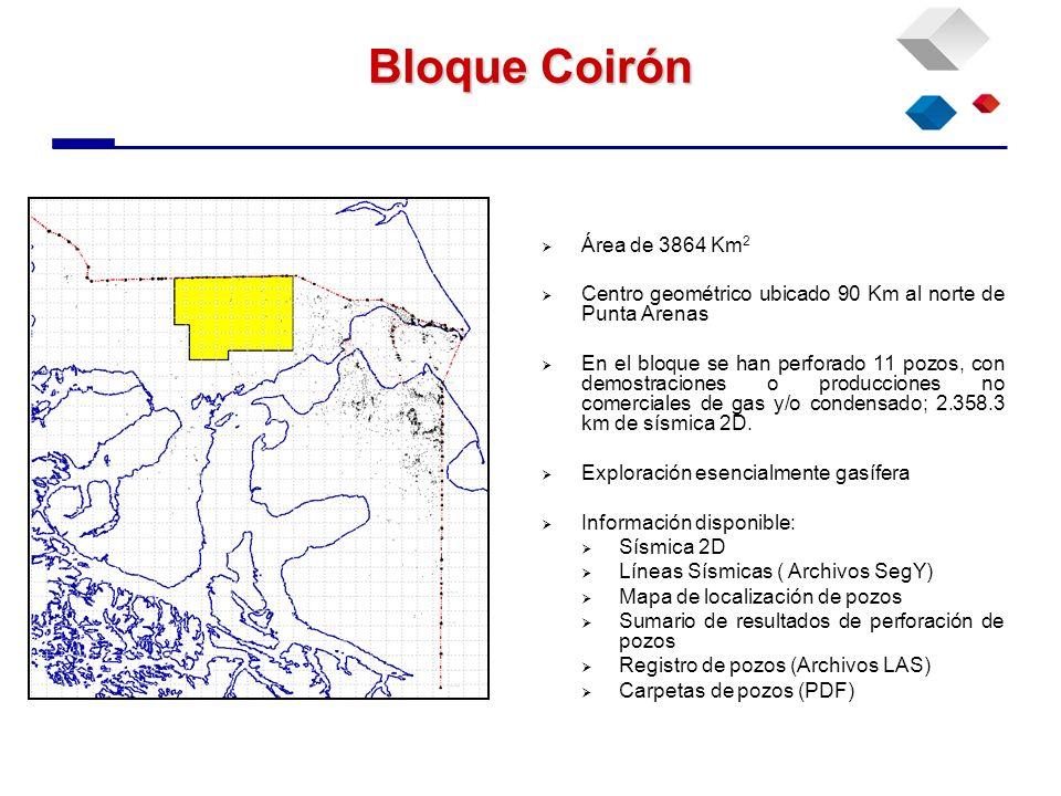 Bloque Coirón Área de 3864 Km 2 Centro geométrico ubicado 90 Km al norte de Punta Arenas En el bloque se han perforado 11 pozos, con demostraciones o