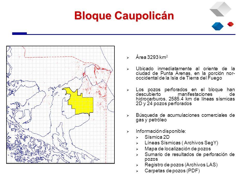 Bloque Caupolicán Área 3293 km 2 Ubicado inmediatamente al oriente de la ciudad de Punta Arenas, en la porción nor- occidental de la Isla de Tierra de