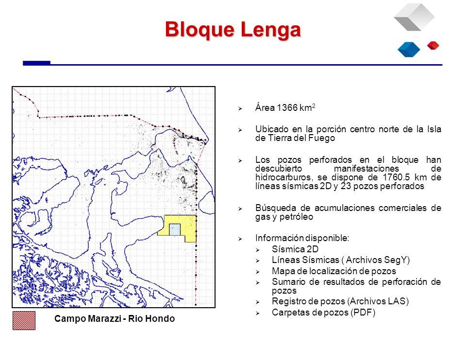 Bloque Lenga Área 1366 km 2 Ubicado en la porción centro norte de la Isla de Tierra del Fuego Los pozos perforados en el bloque han descubierto manife