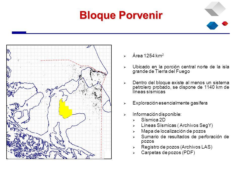 Bloque Porvenir Área 1254 km 2 Ubicado en la porción central norte de la isla grande de Tierra del Fuego Dentro del bloque existe al menos un sistema