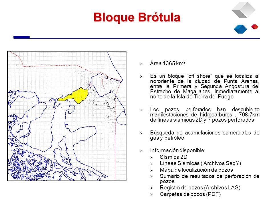 Bloque Brótula Área 1365 km 2 Es un bloque off shore que se localiza al nororiente de la ciudad de Punta Arenas, entre la Primera y Segunda Angostura