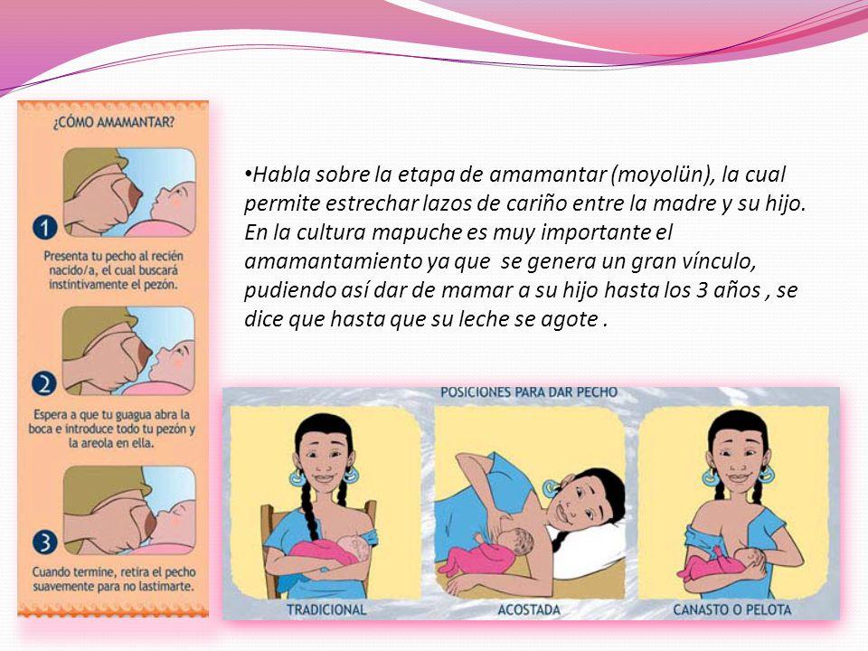 Habla sobre la etapa de amamantar (moyolün), la cual permite estrechar lazos de cariño entre la madre y su hijo. En la cultura mapuche es muy importan