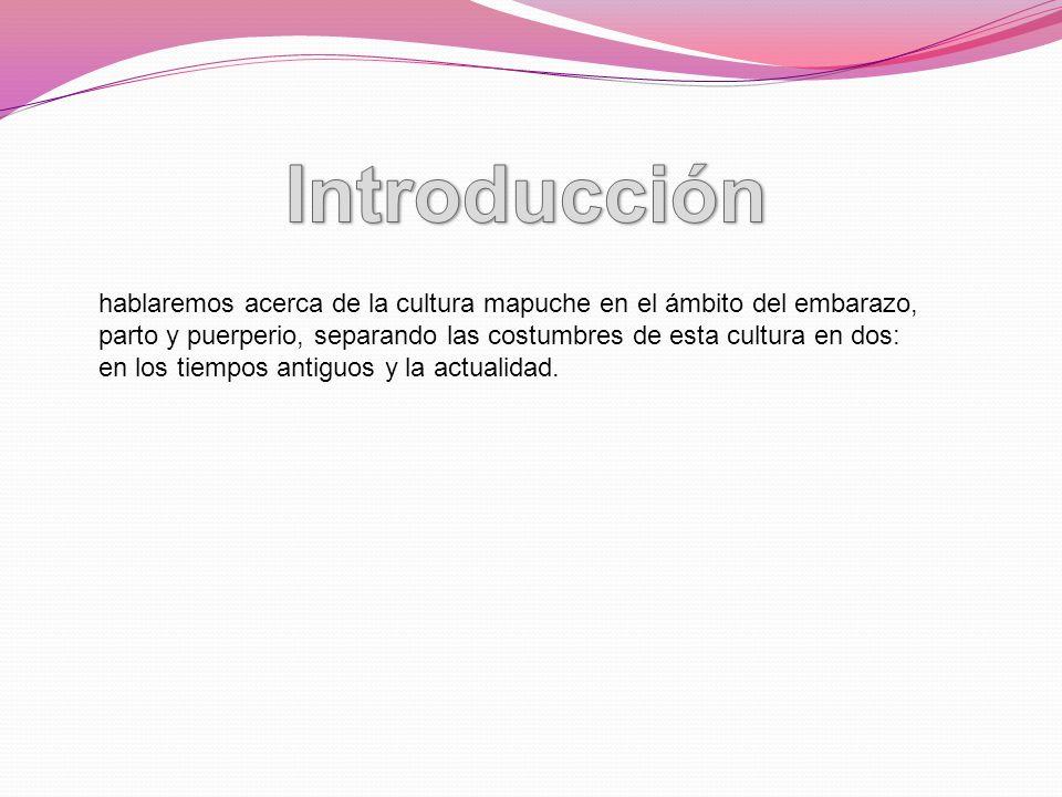 hablaremos acerca de la cultura mapuche en el ámbito del embarazo, parto y puerperio, separando las costumbres de esta cultura en dos: en los tiempos