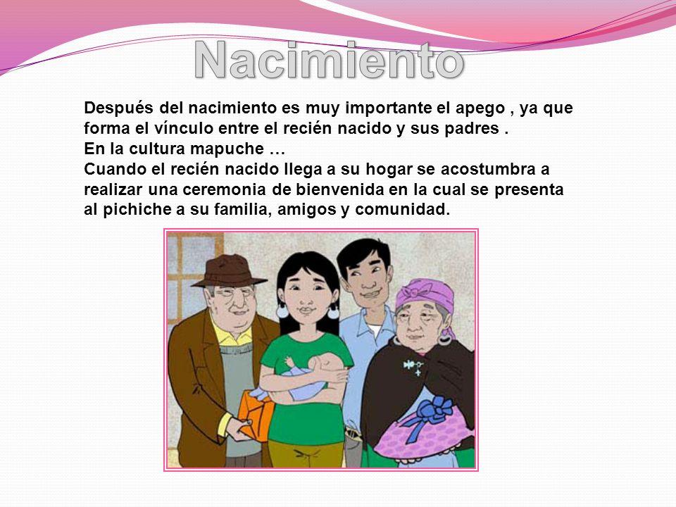 Después del nacimiento es muy importante el apego, ya que forma el vínculo entre el recién nacido y sus padres. En la cultura mapuche … Cuando el reci