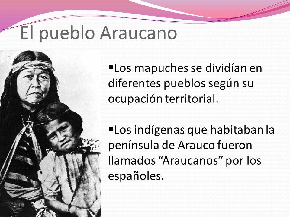 El pueblo Araucano Los mapuches se dividían en diferentes pueblos según su ocupación territorial. Los indígenas que habitaban la península de Arauco f