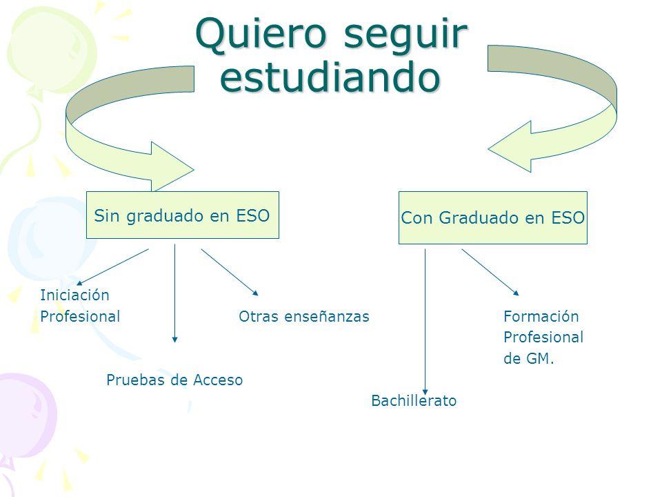 Quiero seguir estudiando Iniciación Profesional Otras enseñanzasFormación Profesional de GM. Pruebas de Acceso Bachillerato Sin graduado en ESO Con Gr