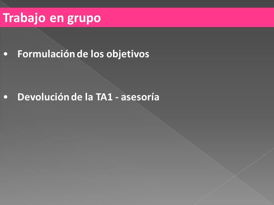 Trabajo en grupo Formulación de los objetivos Devolución de la TA1 - asesoría