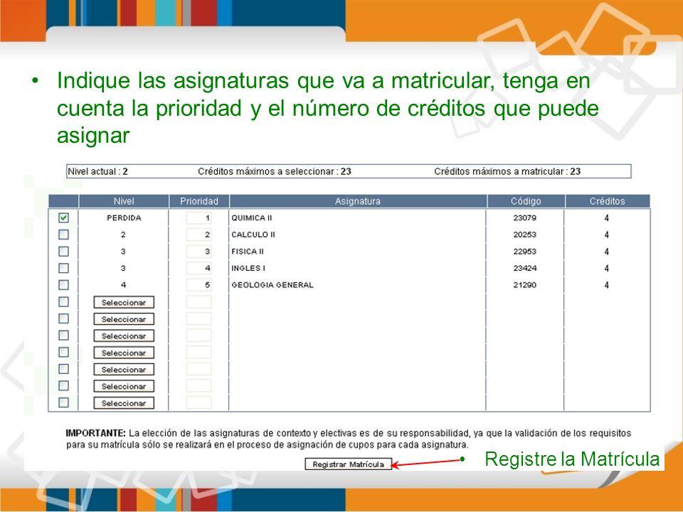 Indique las asignaturas que va a matricular, tenga en cuenta la prioridad y el número de créditos que puede asignar Registre la Matrícula