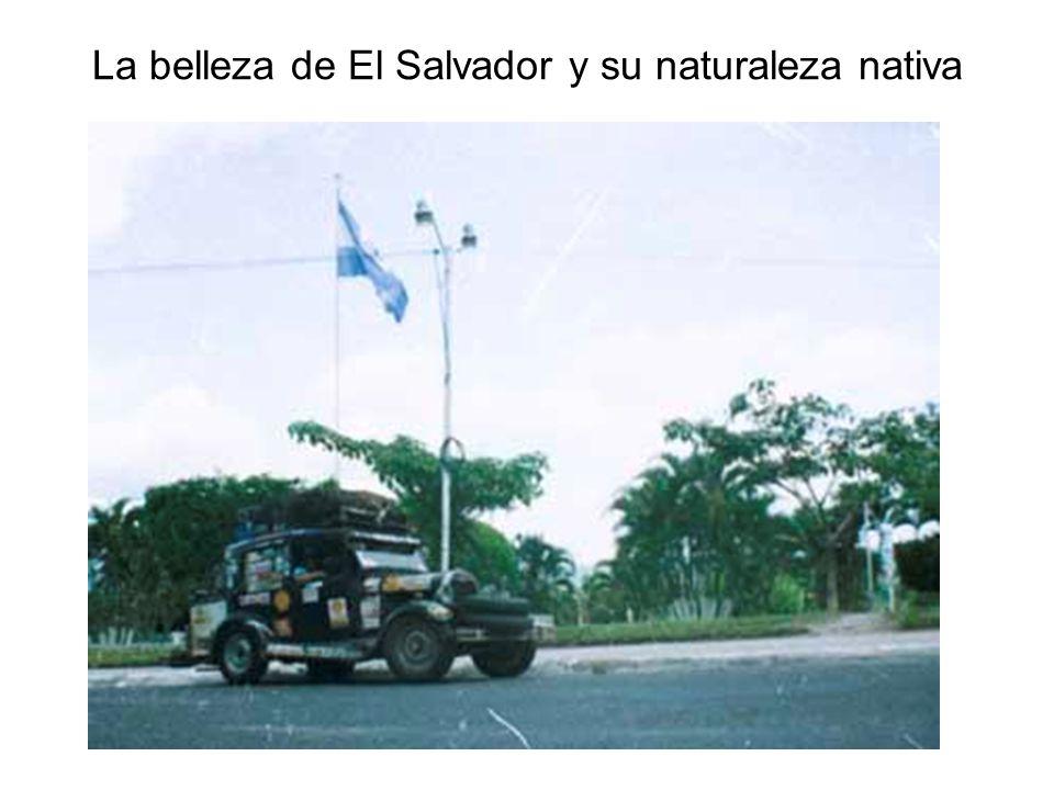 La belleza de El Salvador y su naturaleza nativa
