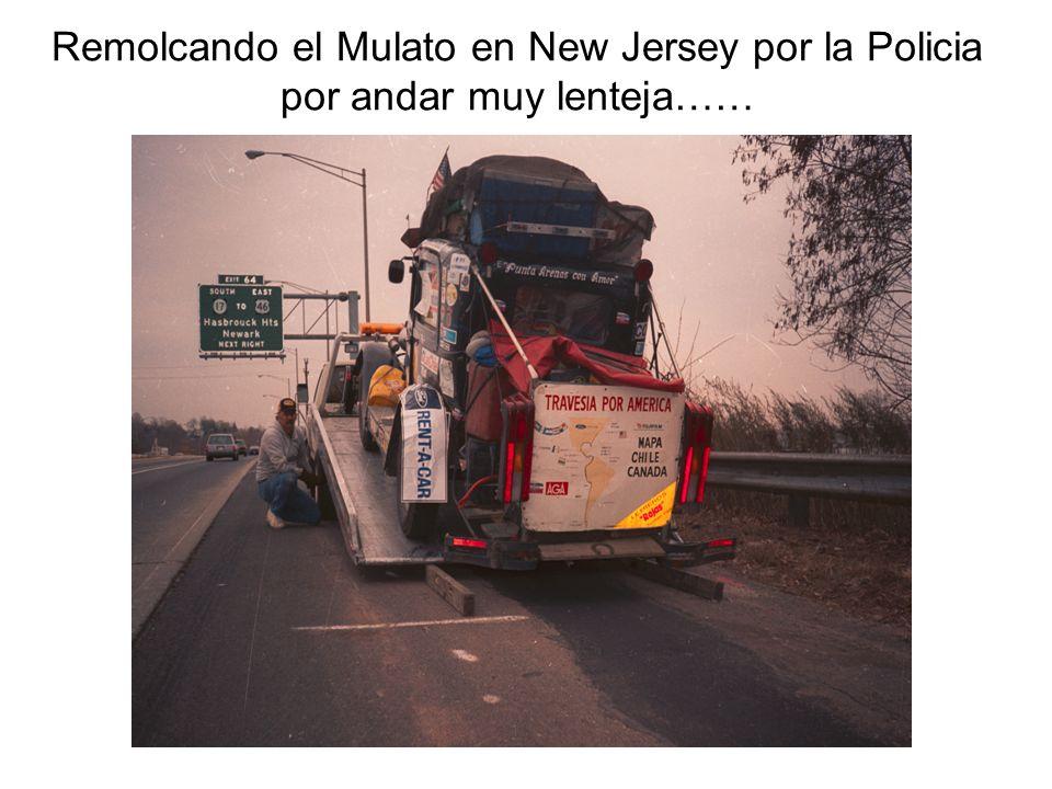 Remolcando el Mulato en New Jersey por la Policia por andar muy lenteja……