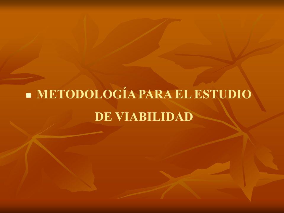 METODOLOGÍA PARA EL ESTUDIO DE VIABILIDAD