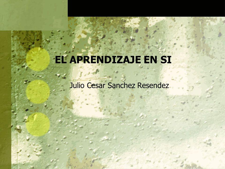 EL APRENDIZAJE EN SI Julio Cesar Sanchez Resendez