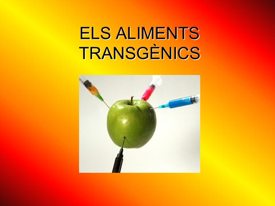 ELS ALIMENTS TRANSGÈNICS