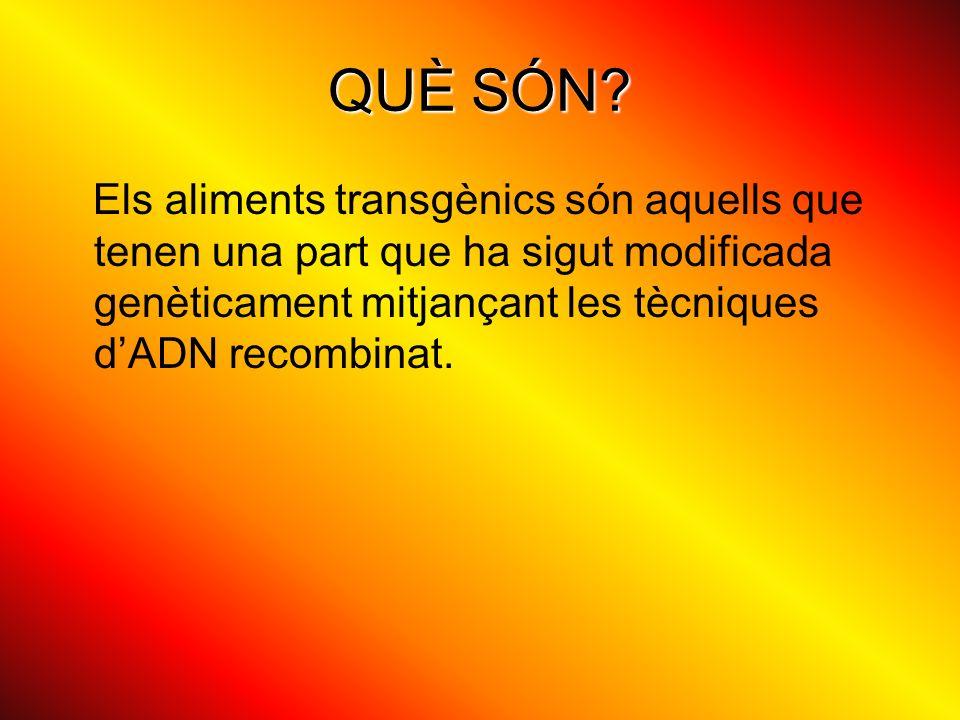 QUÈ SÓN? Els aliments transgènics són aquells que tenen una part que ha sigut modificada genèticament mitjançant les tècniques dADN recombinat.