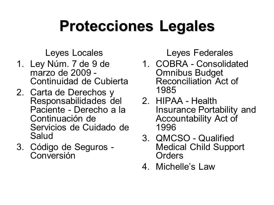 Protecciones Legales Leyes Locales 1.Ley Núm.