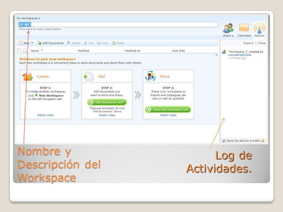 Nombre y Descripción del Workspace Log de Actividades.