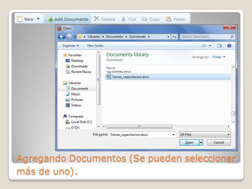 Agregando Documentos (Se pueden seleccionar más de uno).