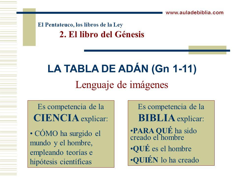 El Pentateuco, los libros de la Ley 2. El libro del Génesis Lenguaje de imágenes www.auladebiblia.com LA TABLA DE ADÁN (Gn 1-11) Es competencia de la