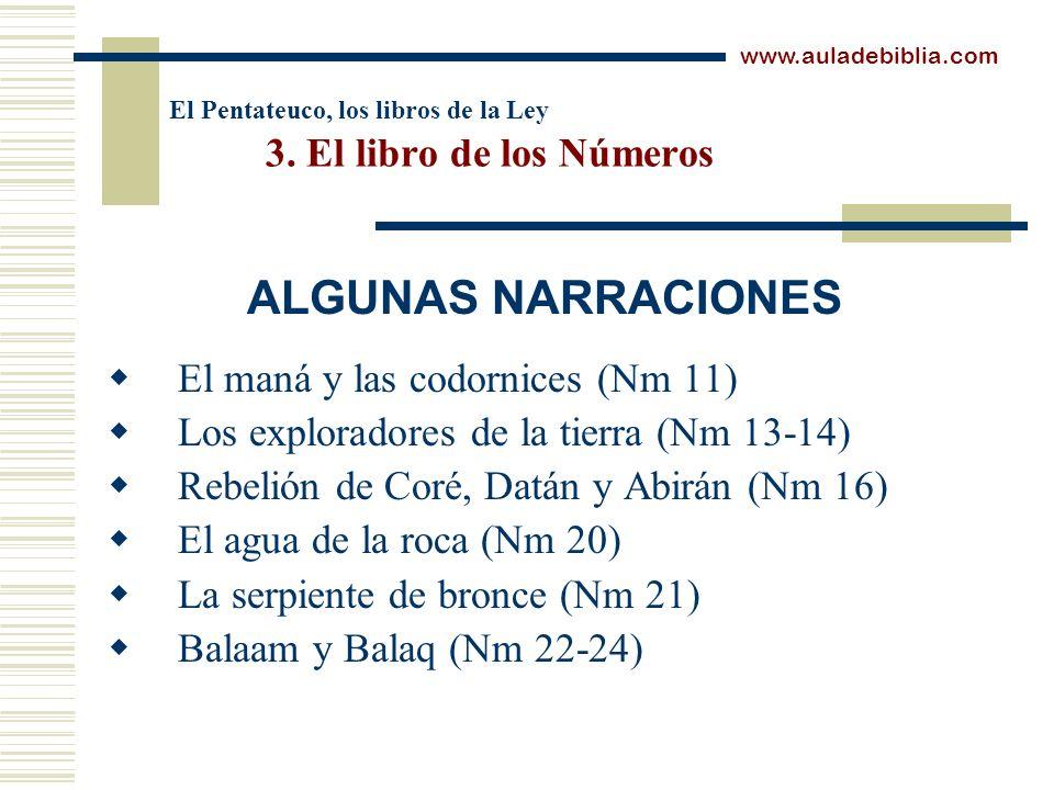 El Pentateuco, los libros de la Ley 3. El libro de los Números El maná y las codornices (Nm 11) Los exploradores de la tierra (Nm 13-14) Rebelión de C