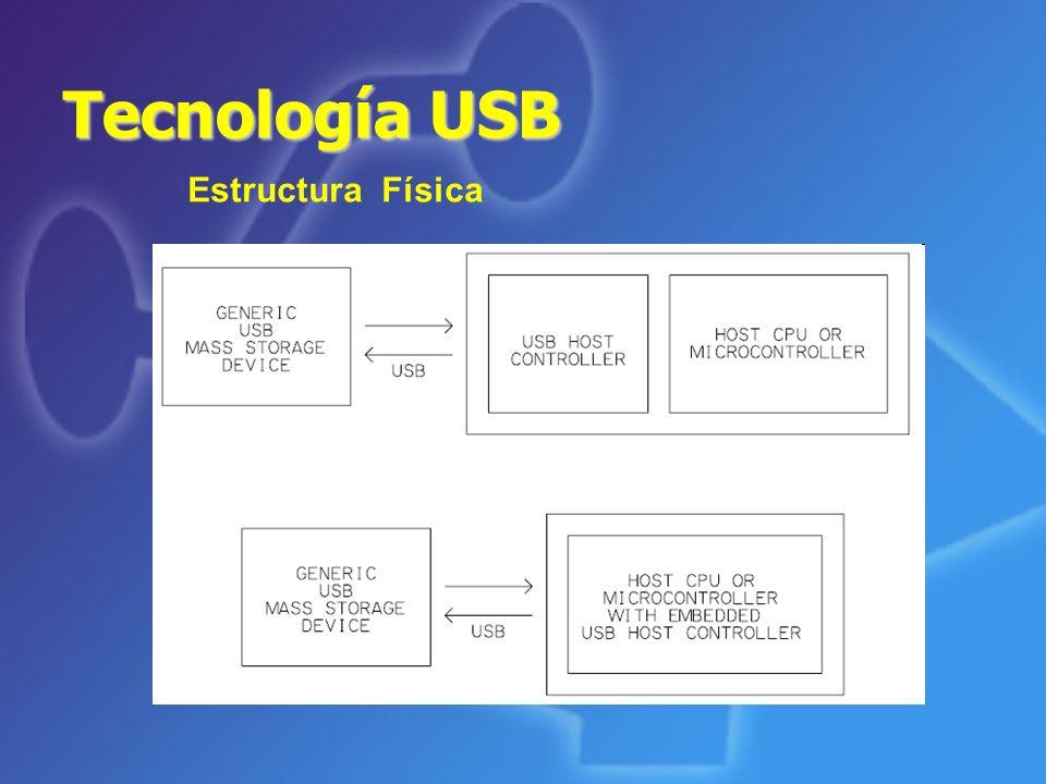 Tecnología USB Estructura Física