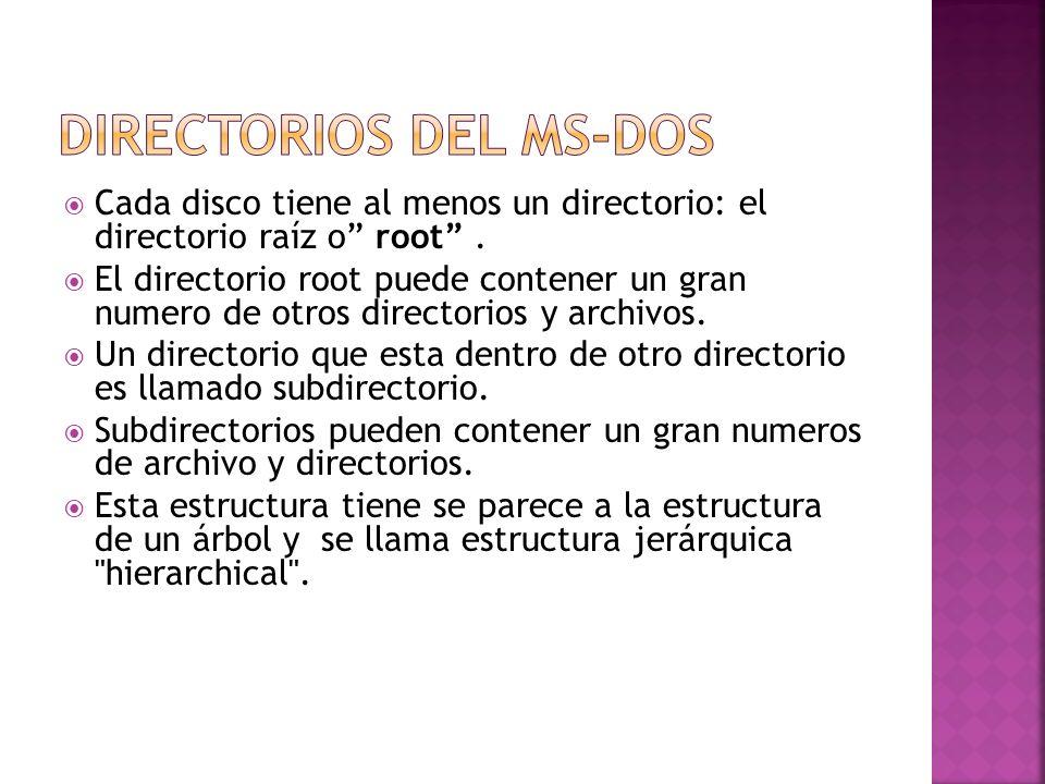 Cada disco tiene al menos un directorio: el directorio raíz o root. El directorio root puede contener un gran numero de otros directorios y archivos.