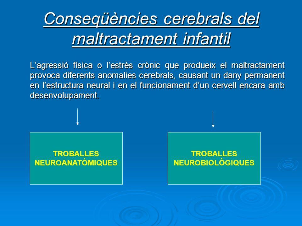Conseqüències cerebrals del maltractament infantil Lagressió física o lestrès crònic que produeix el maltractament provoca diferents anomalies cerebra