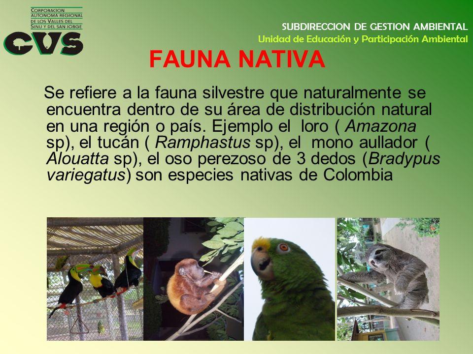 FAUNA NATIVA Se refiere a la fauna silvestre que naturalmente se encuentra dentro de su área de distribución natural en una región o país. Ejemplo el