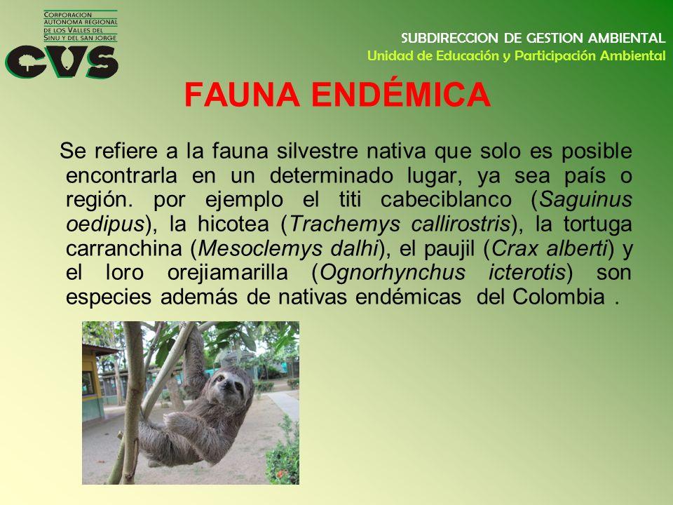 Se refiere a la fauna silvestre nativa que solo es posible encontrarla en un determinado lugar, ya sea país o región. por ejemplo el titi cabeciblanco