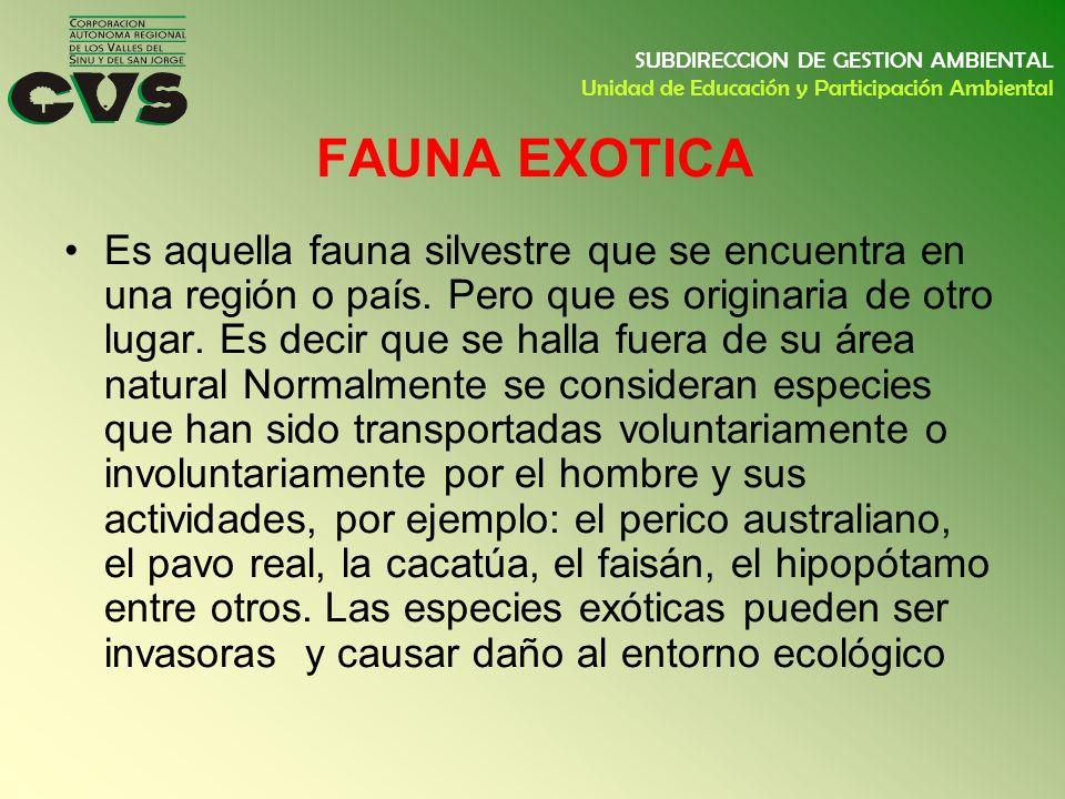 FAUNA EXOTICA Es aquella fauna silvestre que se encuentra en una región o país. Pero que es originaria de otro lugar. Es decir que se halla fuera de s