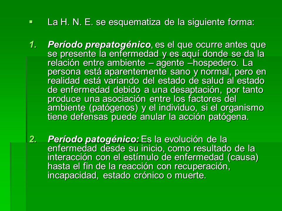 La H. N. E. se esquematiza de la siguiente forma: La H. N. E. se esquematiza de la siguiente forma: 1.Período prepatogénico, es el que ocurre antes qu