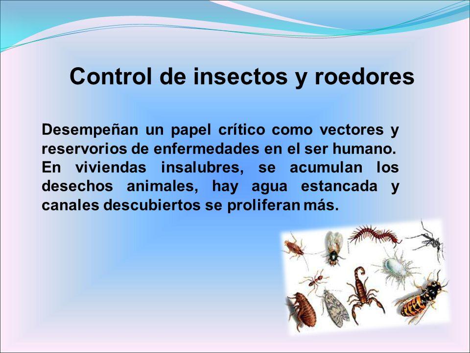 Control de insectos y roedores Desempeñan un papel crítico como vectores y reservorios de enfermedades en el ser humano. En viviendas insalubres, se a