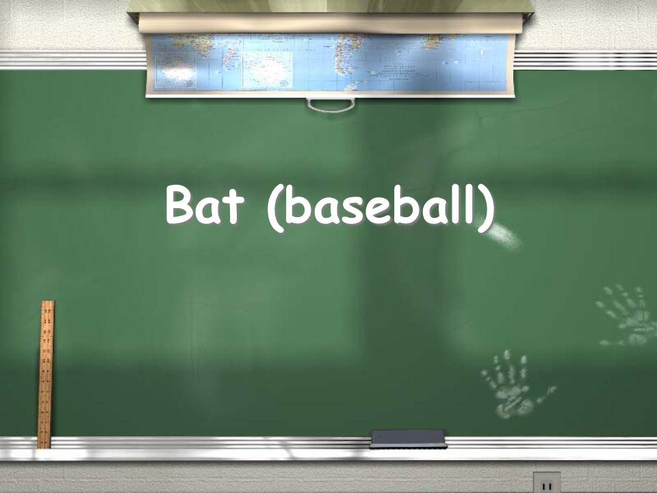 Bat (baseball)