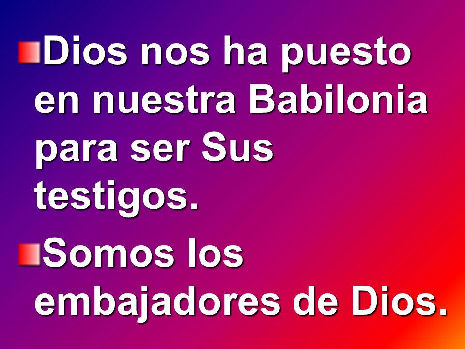 Dios nos ha puesto en nuestra Babilonia para ser Sus testigos. Somos los embajadores de Dios.