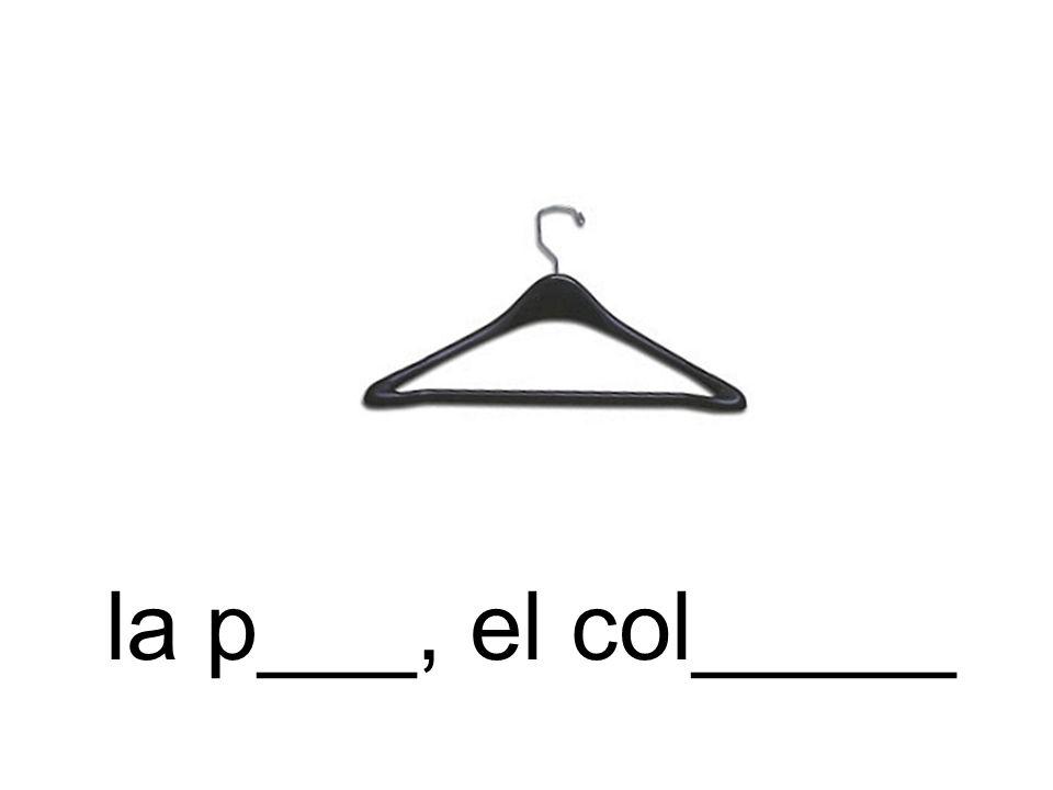 la p___, el col_____
