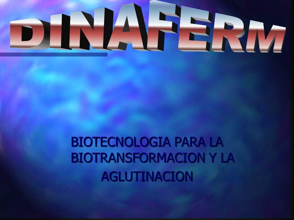 BIOTECNOLOGIA PARA LA BIOTRANSFORMACION Y LA AGLUTINACION