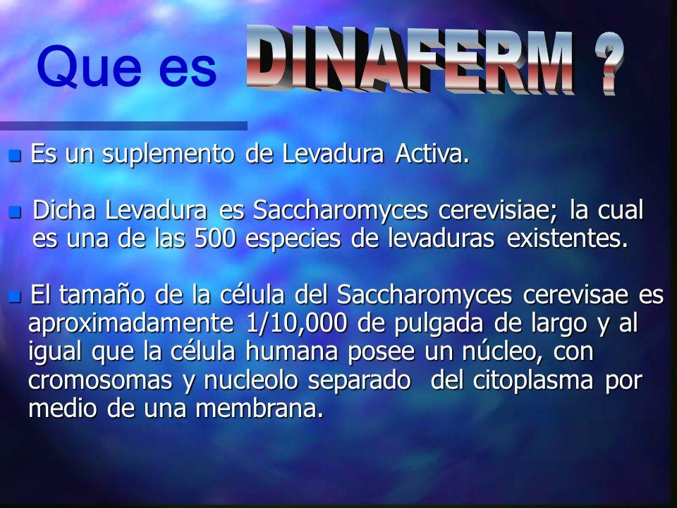 RECOMENDACION DE DOSIS TIPO DE ANIMALDOSIS RECOMENDADA GANADO1 oz, (30 gms ) por cada 450 Kg.