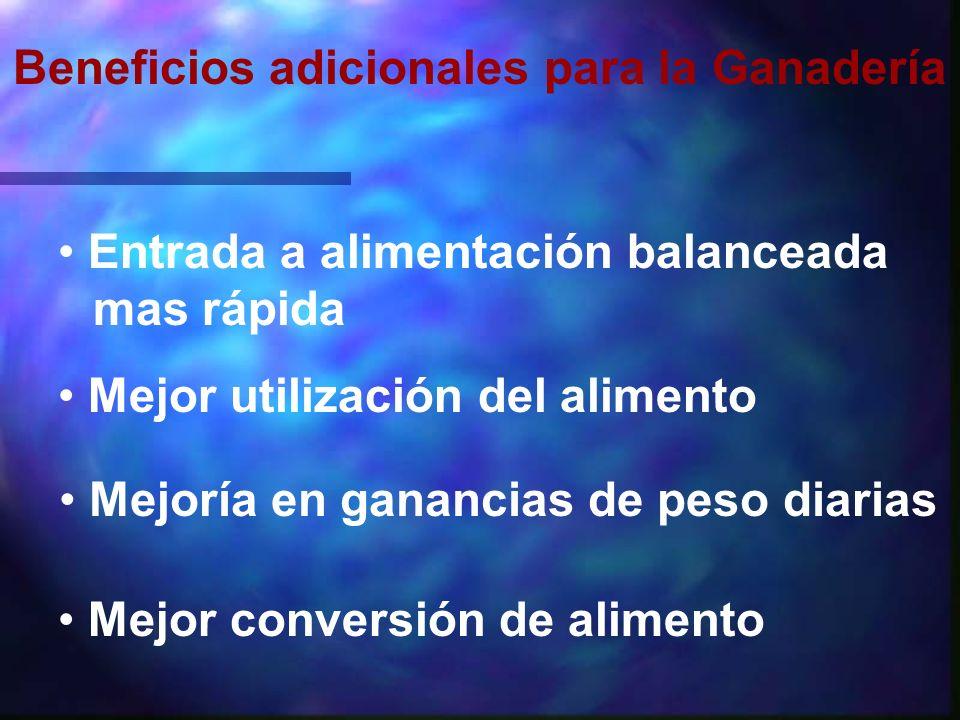 Resultados de Campo en Pollo de Engorde No se usaron grupos de control negativos.