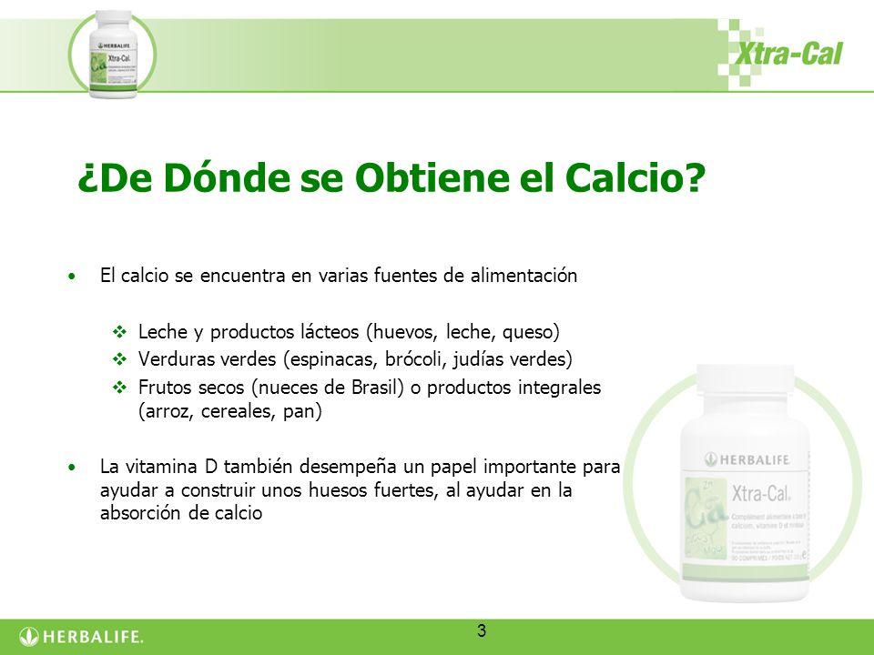 3 ¿De Dónde se Obtiene el Calcio? El calcio se encuentra en varias fuentes de alimentación Leche y productos lácteos (huevos, leche, queso) Verduras v