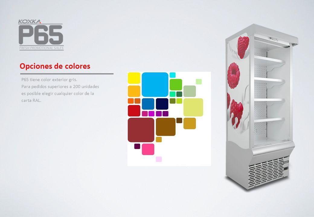 Opciones de colores P65 tiene color exterior gris. Para pedidos superiores a 200 unidades es posible elegir cualquier color de la carta RAL.