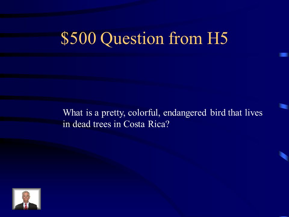 $400 Answer from H5 ticos