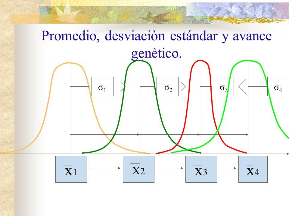 Promedio, desviaciòn estándar y avance genètico. x1x1 X2X2 x3x3 σ1σ1 σ3σ3 σ 2 x4x4 σ4σ4