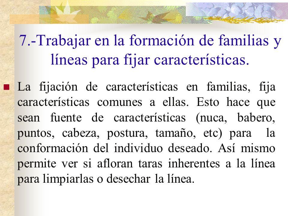 7.-Trabajar en la formación de familias y líneas para fijar características. La fijación de características en familias, fija características comunes